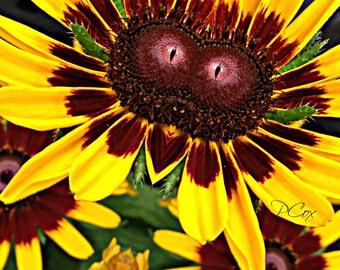 Yellow Flower Fairy