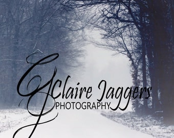 Winter lane Christmas digital backdrop background