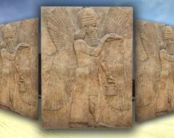 Assyrian Winged Genie/Apkallu Canvas (Palace of King Sargon II) Babylon/Sumerian/Anunnaki - 16x12, 20x16, 40x30 - 3 Sizes Available