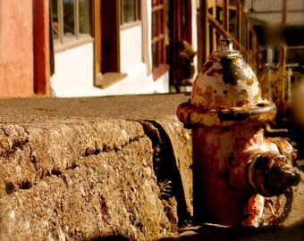 The Town Hydrant In Jerome