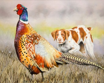 Upland Game - male ring-necked pheasant and a hunting dog