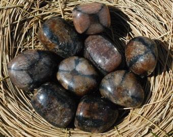 Tumbled Chiastolite, Andalusite, Cross Stone/Healing Stone/Crystal/Reiki/Shamanic