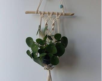 Planthanger /wallhanger