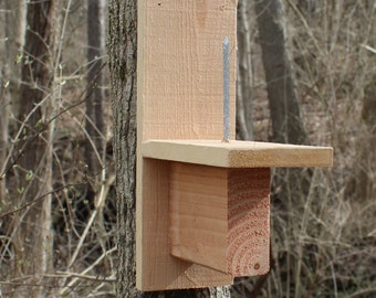 Squirrel Feeder: Cedar
