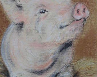 Piggy -pastel mounted but not framed