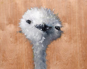 Pygmy Snow Ostrich