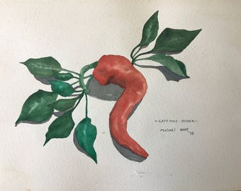 Cayenne Pepper watercolor