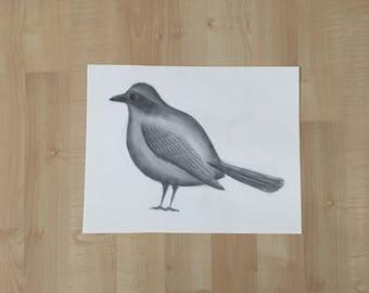 Bird Drawing - Charcoal