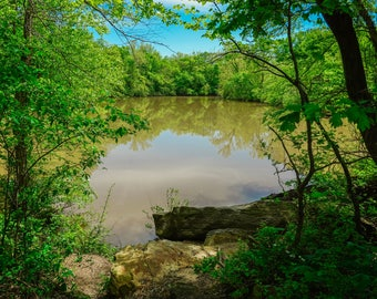 Nature Photo of A Lake