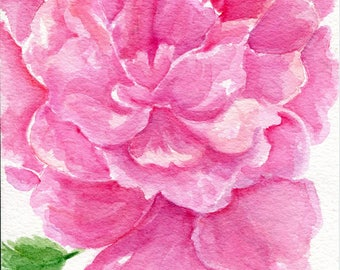 Peony Watercolors Painting, Peony painting Original Flowers artwork, 5 x 7, original watercolor painting, Peony artwork SharonFosterArt