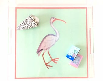 TROPICAL BIRDS (2 images -reversible!) 12X12 Acrylic Tray