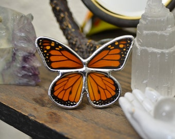 Real Monarch Butterfly Display. Tabletop Display. Boho Style Decor. Butterfly Shadowbox Display.