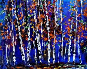 Blue Birch Trees -   print - 8 x 10 photo prints buy 2 get 1 free