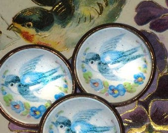 Glass Dome Button Reproduction Antique Bluebird Button Lovely!