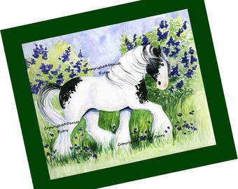 Gypsy Horse Art Print Piebald Cob Vanner Tinker Equine Art ACEO ATC Print Horse Lover Horse Gift Horse ACEO Art Artwork by Denise Every