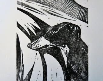 BirdsforBirds Greyhound in Sun art block print