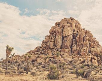 Joshua Tree print, desert photograph, Coachella art, landscape photography, brown, blue, southwest wall art, Joshua Tree photo, Myan Soffia