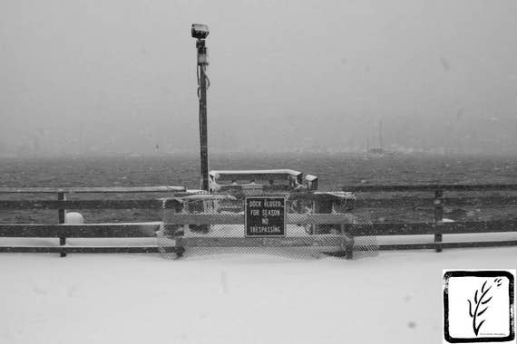Dock, B&W Photograph, photo print, fine art, wall art, home decor, winter, snow, wintry, blizzard, New York, Long Island, harbor, haiku