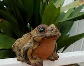 Bullfrog Toad Ceramic Garden Planter Decor / Large Bullfrog Amphibian Figurial Herpetology