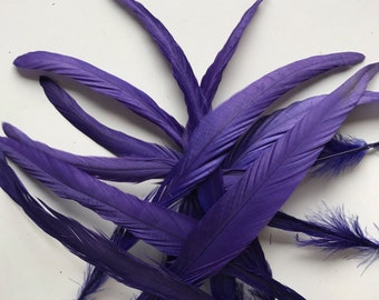 COQUE TAIL FEATHERS Loose, Deep Purple , Violet / 184