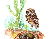 Owl print,  Owl wall art, Burrowing Owls,  National Aviary, wild bird art, kids room art, modern bird art,