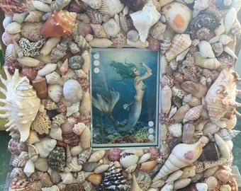 Free Shipping!  Beautiful One of a Kind Mermaid Picture, Seashell Frame, Hand Crafted Seashell Frame, Original Artwork, Beach Cottage