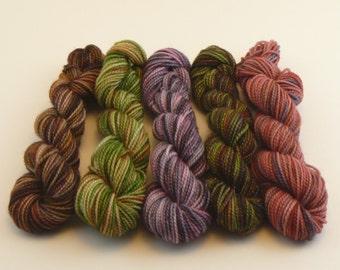 NEW Yarn of Letters Mini Sock Skein Set - Mixed Seasons Set A- 50g/200yd