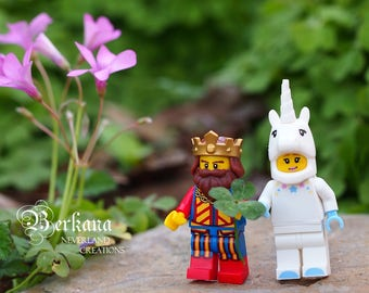 Lucky Lego King and Queen of the Enchanted Castle Fine Art Macro Photography Digital Download Print Prince Princess Nursery Room Boy Girl