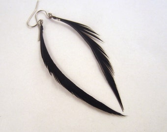 thin black feather earrings dangler feathers