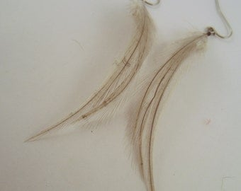 Feather Earrings small  Gray Dangler natural