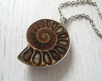 Chocolate Amber Brown Ammonite Fossil Pendant