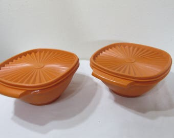 Tupperware Bowls Set of 2 with Servalier Lids