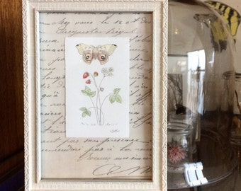 Original Mini Botanical Strawberry and Moth  Vintage Frame   5x7   Gift