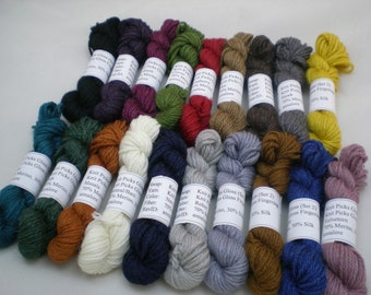 Mini Skeins - Knit Picks Gloss Fingering 5 g set of 19 (complete set)