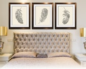 Feathers (Series B3) Set of 3 - Art Prints (Featured in Cream and Gravel) Nature Woodland Inspired