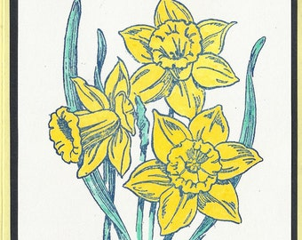 Flower of the Month-March's Daffodils