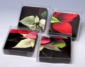 Coasters for Christmas, pointsettia, botanic, set of 4 different images, perfect gift for hostess, entertaining winner, under 30 dollars