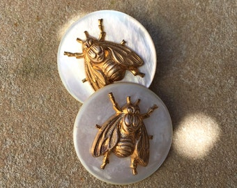 Antique MOP Buttons and Brass Bee Escutcheon Buttons Insect Buttons