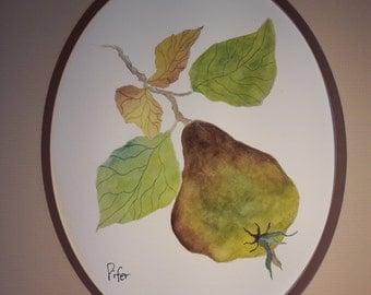 Original Watercolor Painting of a Pear