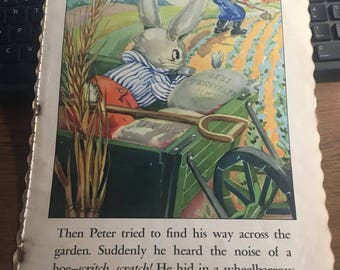 Peter cottontail print Ruth Newton  illustration 9 x 13 approx vintage