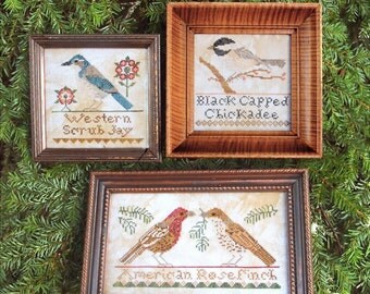 The Bird Collection, Part III: Western Scrub Jay, Black Capped Chickadee, American Rosefinch. Cross Stitch Pattern by Heartstring Samplery