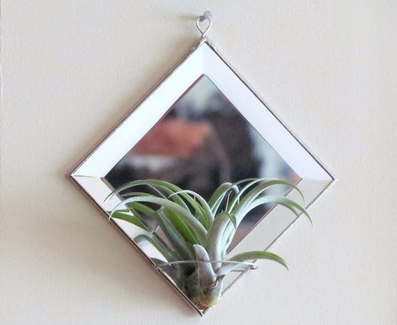 Geometric air plant holder diamond shaped beveled mirror for Geometric air plant holder