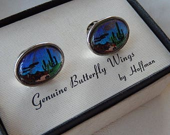 Butterfly Wing Cufflinks, Men's Vintage Cufflinks, Oval Shape, Desert Theme, Gift for him