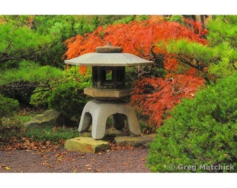 """Fine Art Color Nature Photography of a Japanese Lantern and Fall Foliage in a Japanese Garden - """"Japanese Lantern 1"""""""