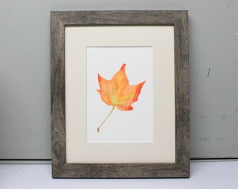 Original Artwork Watercolor Painting Print Maple Leaf Fall Leaves New England