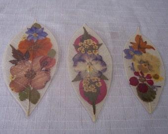 Pressed flowers on leaf skeletons book marks, set of 3. Set 040.