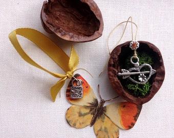 silver heart charm in a  walnut shell. open my heart.  valentine gift.