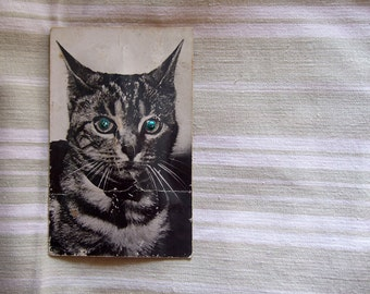 POSTCARD Cat SQUEAKY French vintage squeaking Feline kitten card with sound byte