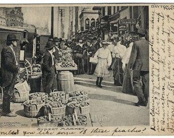 Dayton Ohio Street Market Postcard, Fruit & Vegetable Sellers, Signs, Antique 1910 Ephemera, FREE SHIPPING