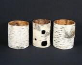 3 Birch Bark Tubes .... Natural Decor